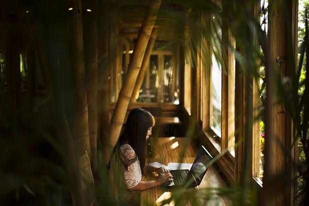 Hubud: райский уголок для цифровых кочевников