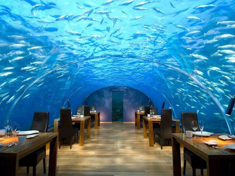 Подводный ресторан «Ithaa», Мальдивы