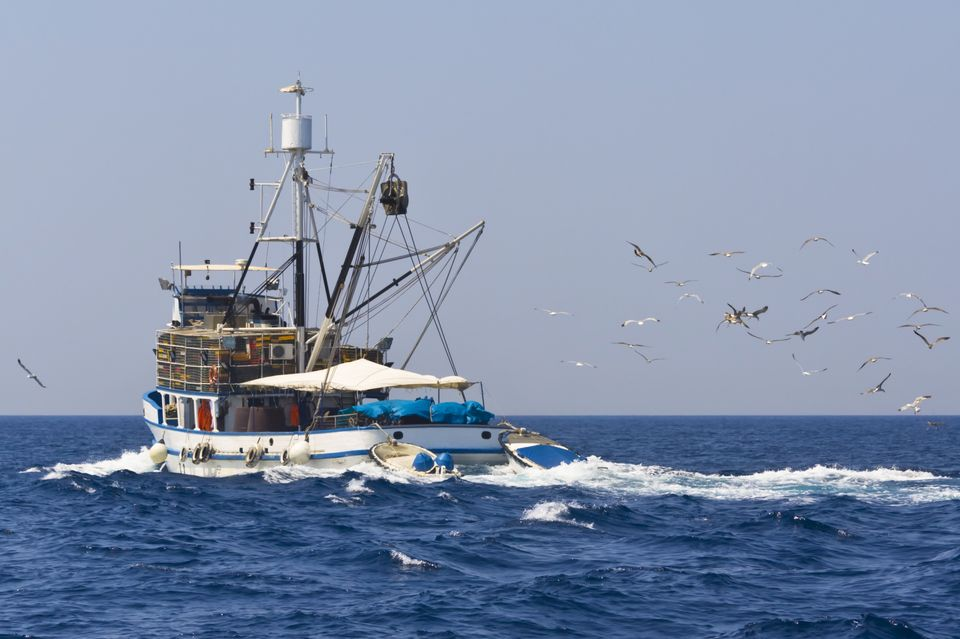 Рыбаловецкое судно